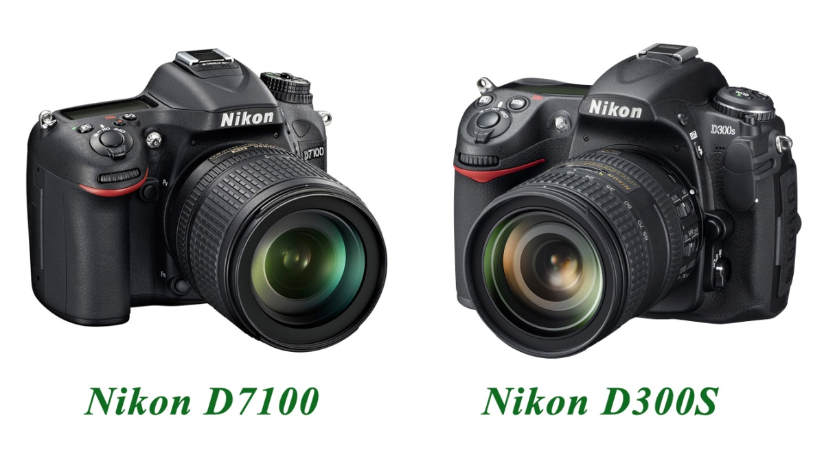Nikon D300S & D7100 qarşı qarşıya.