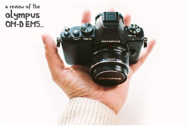 Olympus EM5 M2 + 17mm (34mm) f1.8